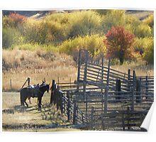 Corrals in Autumn Poster