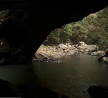 natural bridge springbrook national park Queenland by Lawrence Gauci