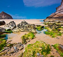 Cornish Summer's Day by OllyPlumstead
