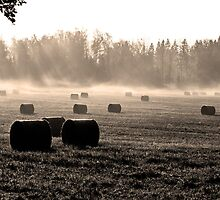Bales ll by Mark Williams