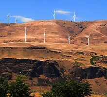 Wind turbines above Columbia River by zumi