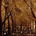 Bryant Park - New York by meganparker