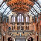 Natural History Museum - HDR by Colin J Williams Photography