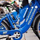 Bikes of Bikes by David Baird