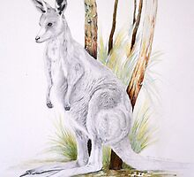 Kangaroo by Narelle Richardson