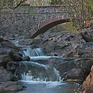 Amity Creek in Fall by by M LaCroix