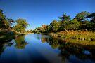 Bradgate Park by Yhun Suarez