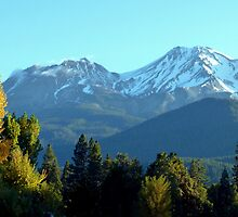 Shasta Morning by Elaine Bawden
