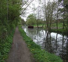 Stroud Water Canal in Gloucestershire by Dizzy-t