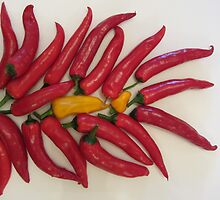 Chilli Peppers by Cath Baker