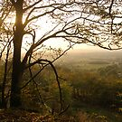 Late October Landscape, East Devon by Mike  Waldron
