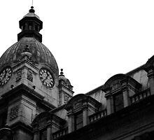 Downtown Building by ShereneBalanji