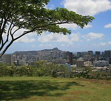 Diamond Head from Punchbowl by Maurine Huang