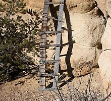 Homemade ladder by KDPhotos