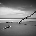 Bundaberg in Black and White by Luke Griffin