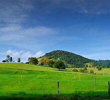 Gympie Dairy Country by Kate Wall