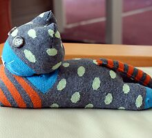 Sock Cat 2 by Karen Fitzsimons