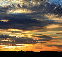 Thorny Croft's Paintbrush Sunset, Free state, South Africa by Qnita
