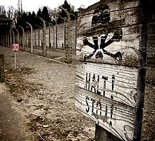 Warning sign at Auschwitz by Wintermute69
