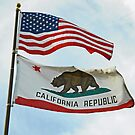 The United States and California Flags by Lenny La Rue, IPA