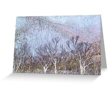 After the Fires Greeting Card
