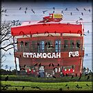 Lets have a sing-a-long at the Ettamogah Pub by myraj
