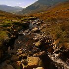 Mountain Stream by Ciaran Sidwell