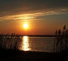 Sunset over Barnegat Bay NJ. by Scott Brookshire