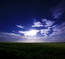 Moonlight Shadow by ╰⊰✿Sue✿⊱╮ Nueckel