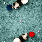 Animal Art - Ping Pong Pandas by Michael Murray