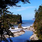 ruby beach, washington, usa iphone by dedmanshootn