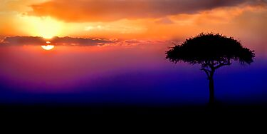 Sunset Over Masai Mara, Kenya III by Damienne Bingham
