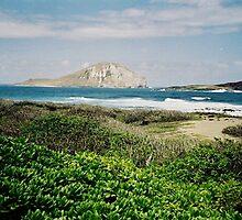 Manana Island by Eileen Brymer