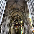 Cathedrale Notre Dame de Rouen (2) by Larry Davis