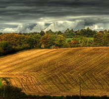 Last day of the harvest by RDaviesImages