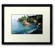 #1065 Framed Print