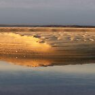 Sand Dune Sunset by Kristina Gale