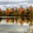 Autumn Hues by janetlee