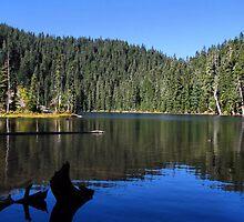 "Blue Lake ""Indian Heaven"" Wilderness  by Don Siebel"