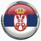Serbia Flag by 3Dflags