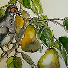 Partridge in a pear tree. Elizabeth Moore Golding 2011? by Elizabeth Moore Golding