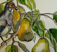 Partridge in a pear tree. Elizabeth Moore Golding 2011Ⓒ by Elizabeth Moore Golding