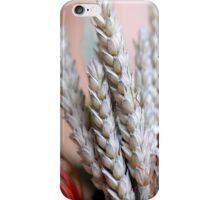 Healthy & Decorative (P) iPhone Case/Skin