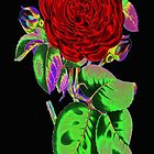 Neon Flower © by Dawn M. Becker