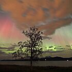 Auroras with multiple colors by Frank Olsen