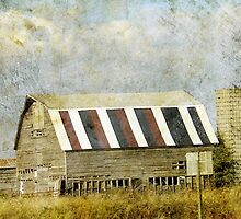 Red White and Blue Iowa Barn by angelandspot