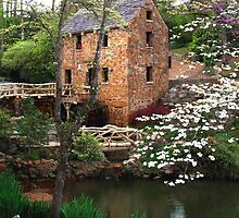 The Old Mill by ImagesByJessie
