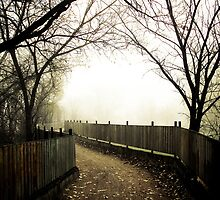 Foggy Waterfront 01 by mdkgraphics