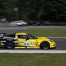 ALMS 2011 LRP Corvette by gtexpert