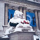 Snow-Covered Lion, New York Public Library by lenspiro